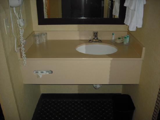 SpringHill Suites by Marriott Frankenmuth: Vanity