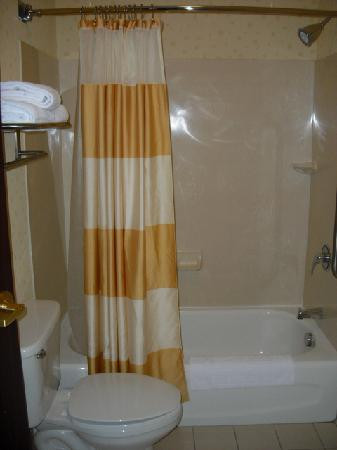 SpringHill Suites Frankenmuth: Shower/commode room