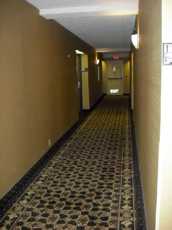 Hampton Inn Cleveland Westlake: 2nd floor hallway