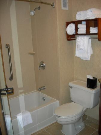 Hampton Inn Cleveland Westlake : Shower and commode