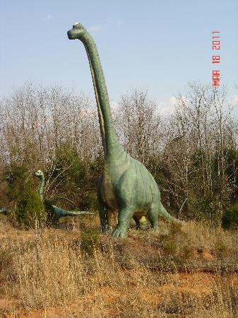 Dinosaur World: Tall vegetarian