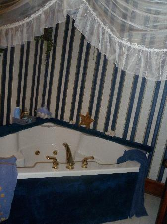 The 1887 Hansen House: relaxing jukuzi