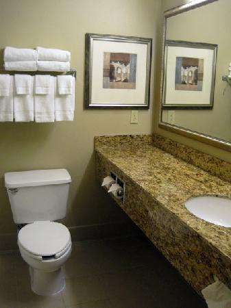 Country Inn & Suites By Carlson, Toledo: Bathroom in our room
