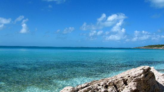 Staniel Cay Cottages: Is it more gorgeous above the surface?....