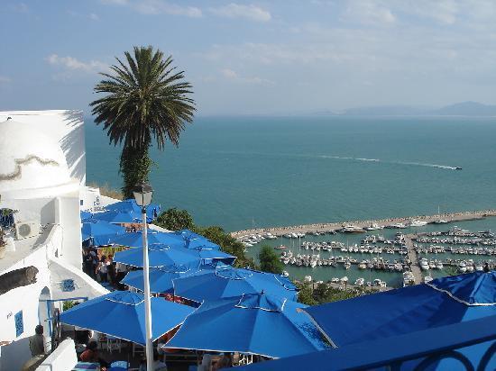 Cafe des delices sidi bou said restaurant reviews for Sidi bou said restaurant