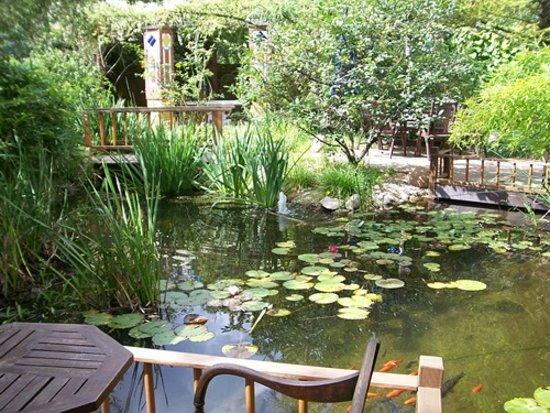 Hotel Grenzfall: Garten mit Fischteich