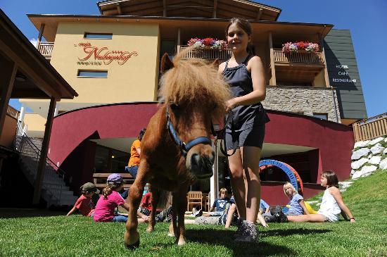 Hotel ...mein Neubergerhof: Kinderbetreuung mit Aktivprogramm