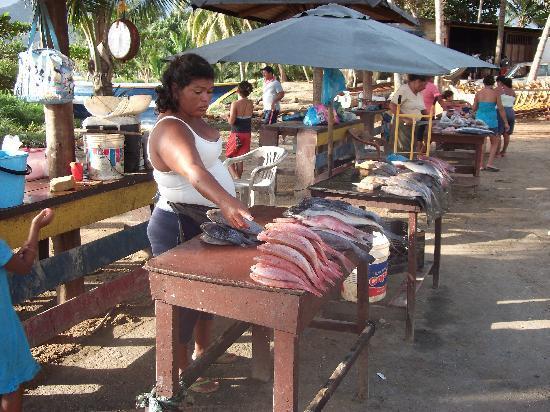 Isla Caribe Beach Hotel : Fischmarkt