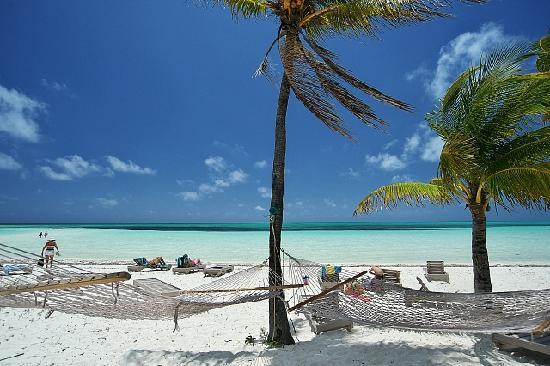 Banana Bay : デッキの隣にはハンモックとビーチチェアがありました。