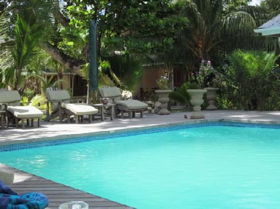 Indian Ocean Lodge: Pool