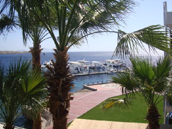 Lido Sharm Hotel: View from our Room