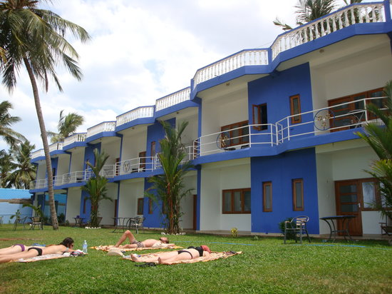 Tri Star Beach Hotel : A few gras between hotel and beach
