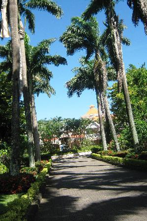 Haus Thorwarth - Hotel-Garni: entrance to Coco reef