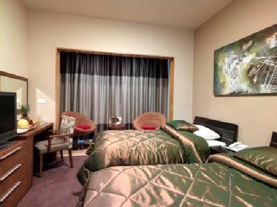 City Suite Hotel: Double Room