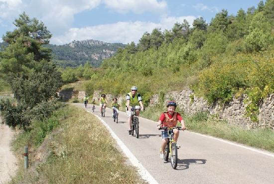 Salou Downhill Bikes: A unique family day out