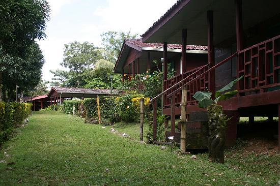 path way to cabins