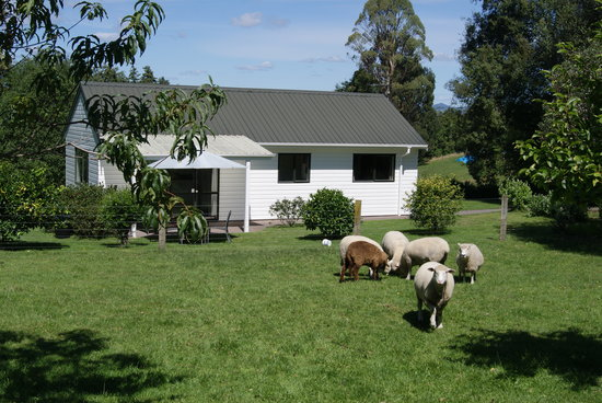Broekhaven Country Cottage: Peaceful farmstay