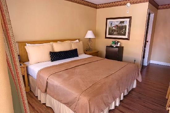 Laguna Beach Inn: King room