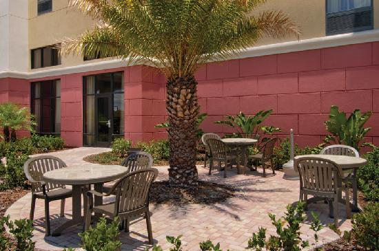 Hampton Inn & Suites Tampa-Wesley Chapel: Relax under the swaying palm trees in the Florida sun.