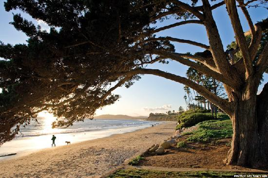 Montecito, CA: Butterfly Beach is one of Santa Barbara's stretches of beautiful coastline, best experienced at