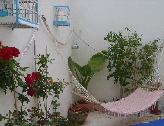 B&B Residenza CandiaMare : terrazza