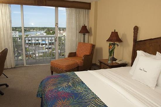 Doubletree Beach Resort by Hilton Tampa Bay / North Redington Beach: Inland Guest Room with King Bed