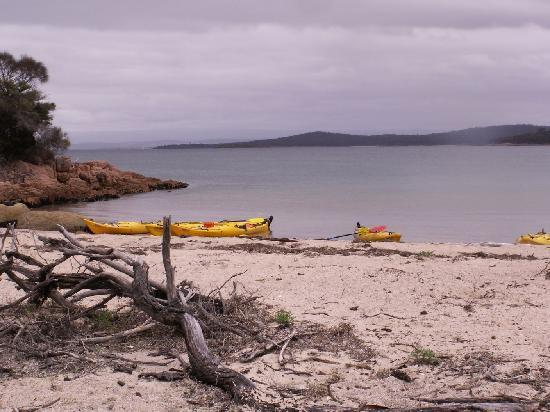 Freycinet Adventures: View back across the bay