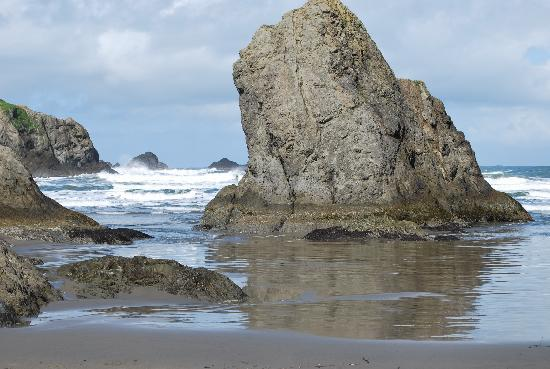 Bandon Beach Motel: One of the beaches near the hotel - Beautiful!