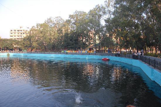 Lake Venetia for boat rides at Vardhman Fantasy Park.