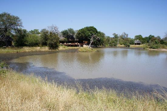 Gomo Gomo Game Lodge: View of the main lodge from across the waterhole.