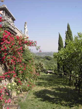 Abbey of Rosazzo (Abbazia di Rosazzo): Schöner Ausblick