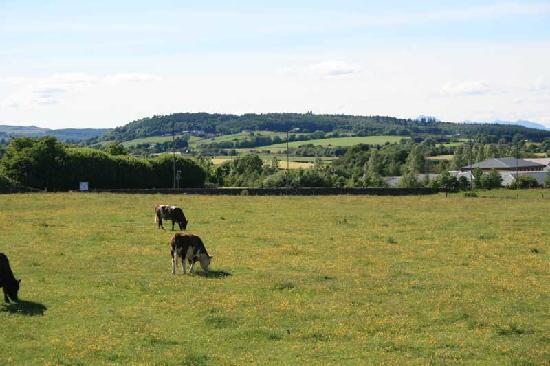 Hillhead Farm Lets: Views from Hotel