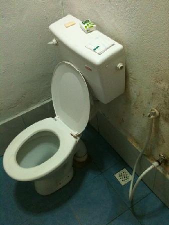 toilettes qui fuient et moisissures au mur - Picture of ...