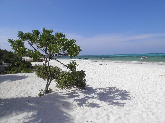Next Paradise Boutique Resort: spiaggia