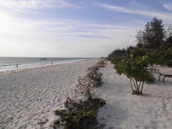 Next Paradise Boutique Resort : spiaggia