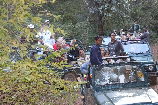 Ranthambore National Park, India: Rush of Tourists