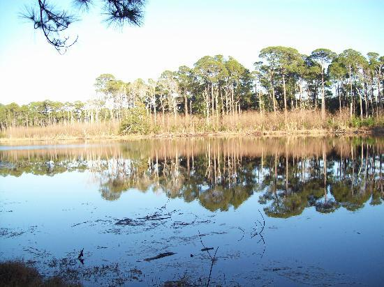 Dauphin Island Harbor House: Freshwater Lake at the Audubon bird sanctuary