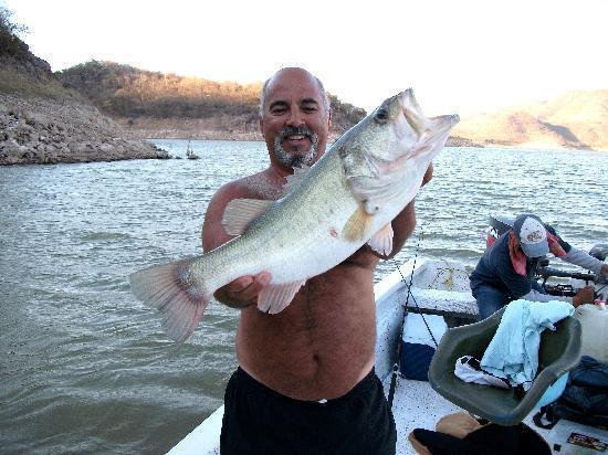 Coras Lodge : 7 lb bigmouth