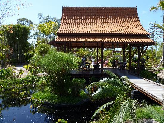 Naples Botanical Garden : Asian Garden