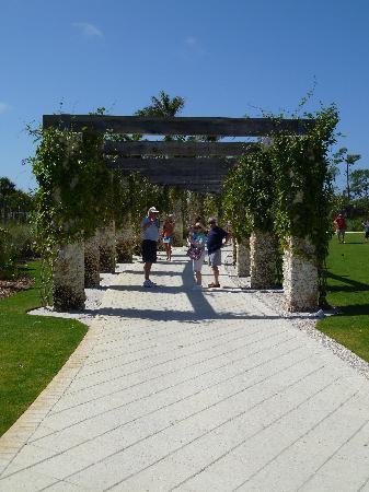 Naples Botanical Garden: Caribbean Garden