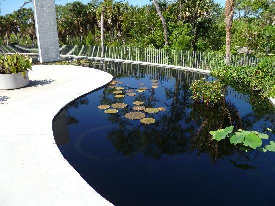 Naples Botanical Garden: Brazilian Garden