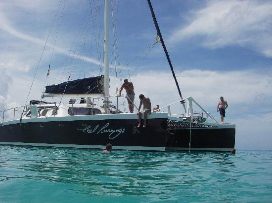 Turtle Beach by Elegant Hotels: Cool Runnings Catamaran