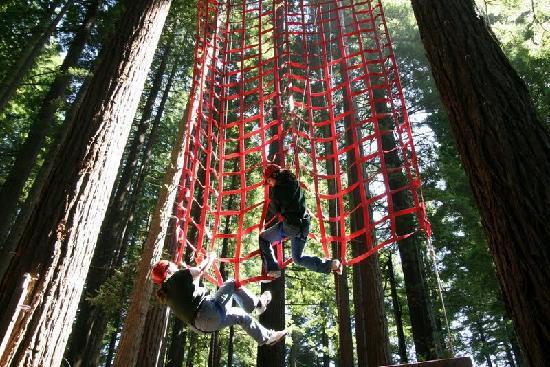North Coast Adventure Centers : Ropes Course, also called Challenge Course or Adventure Park