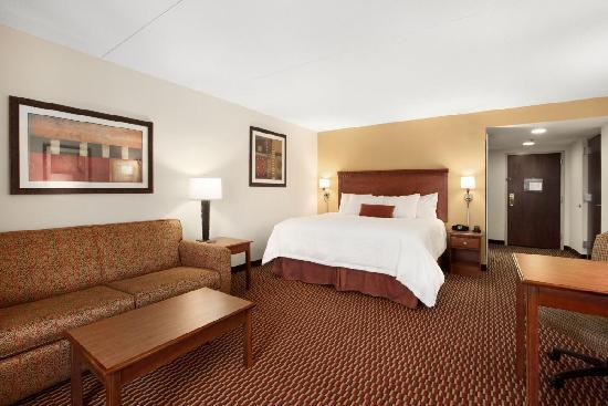 Hampton Inn Charleston - Southridge: King Study