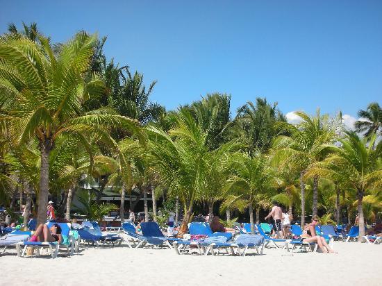 Coral Costa Caribe Resort & Spa: Spiaggia