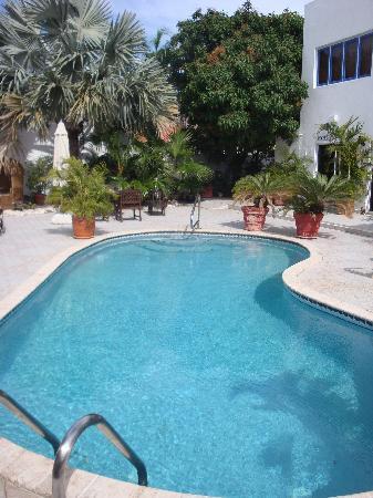 Aruba Harmony Apartments Suites & Hostel: pool @ day