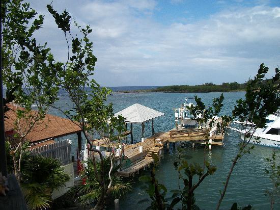 Posada Las Orquideas: View from Balcony Rm 7