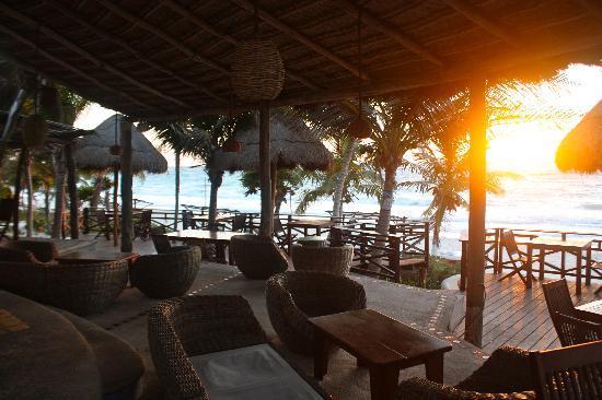 Las Ranitas Eco-boutique Hotel: Restaurant Deck