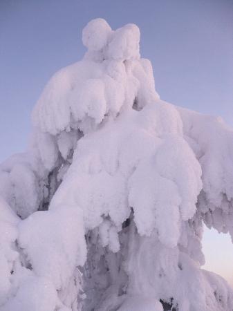 Finnland: Lappi Rukka