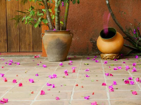 Hostal Casa del Sol Oaxaca: Lovely courtyard